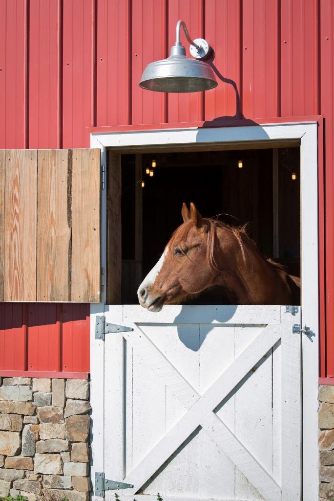 gooseneck barn lights 2